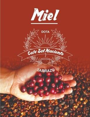 Café Premium en grano 250g Proceso Miel