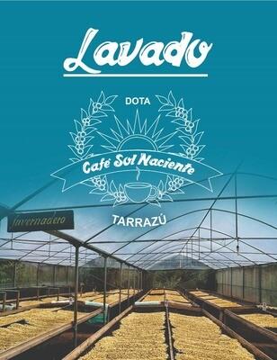 Café Premium en grano 1kg Proceso Lavado