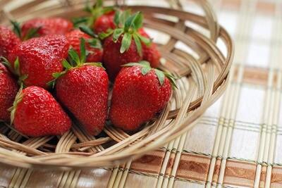 Strawberry 'Hecker' | Bare Root - Gardener's Dozen (13)