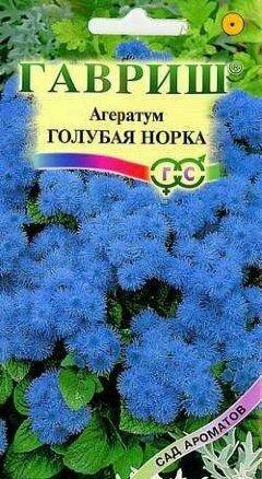 Агератум Голубая норка  0,1 (ГАВ)