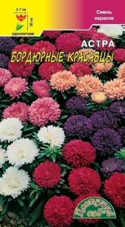 Астра Бордюрные красавцы смесь (ЦВ)