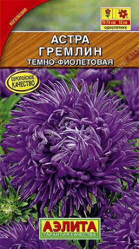 Астра Гремлин Темно-фиолетовая Аэ Ц