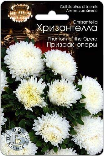 Астра Хризантелла Призрак оперы (БИО)