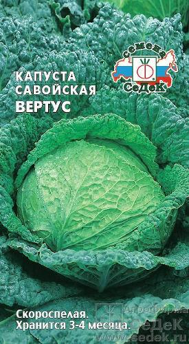 Капуста савойская Вертус (СД)