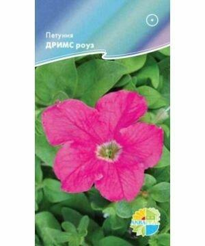 Петуния Дримс роуз (АКВ)