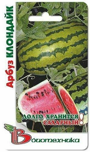 Арбуз Клондайк сахарный 12-13кг (БИО)