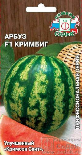 Арбуз Кримбиг 0,5г (СД)