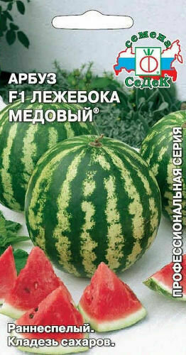 Арбуз Лежебока медовый (СД)