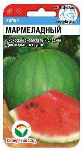 Арбуз Мармеладный (СибСад)