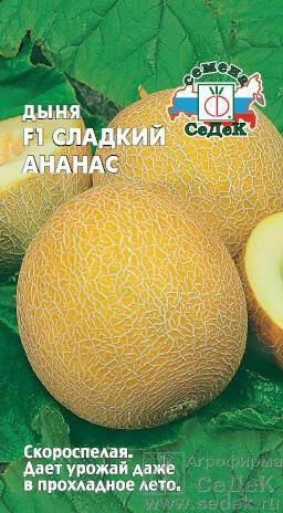 Дыня Сладкий Ананас (СД)
