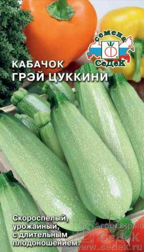 Кабачок Грэй цуккини (СД)