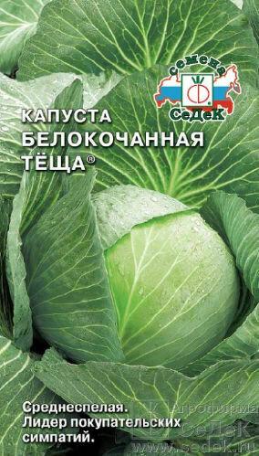 Капуста б/к Теща (СД)