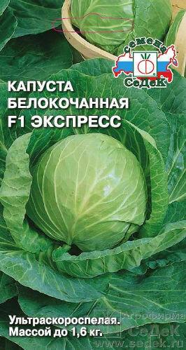 Капуста б/к Экспресс (СД)