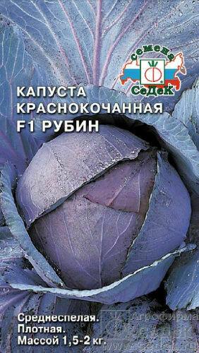 Капуста к/к Рубин (СД)
