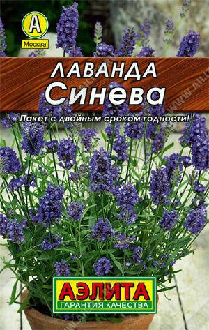 Лаванда Синева Аэ ЛИДЕР