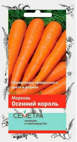 Морковь Осенний король (Семетра)  2гр П+