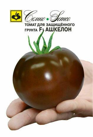 Томат Ашкелон F1 (СЕМ) (5 семян)