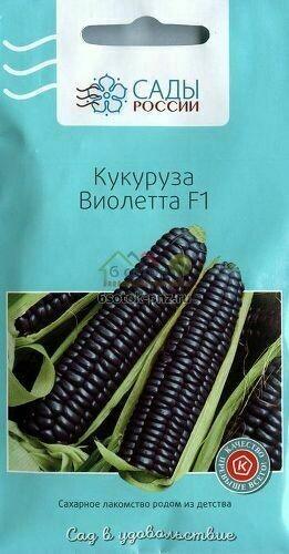 Кукуруза Виолетта F1 фиолетовая 10шт (Сады России)