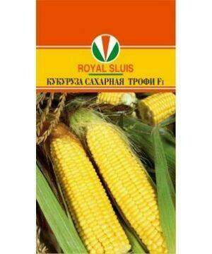 Кукуруза Трофи (АКВ) (RS)