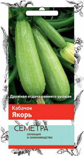 Кабачок Якорь белоплодный 2гр (Семетра) П+Ц =