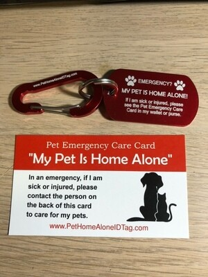 Pet Home Alone ID Tag/keychain with Carabiner
