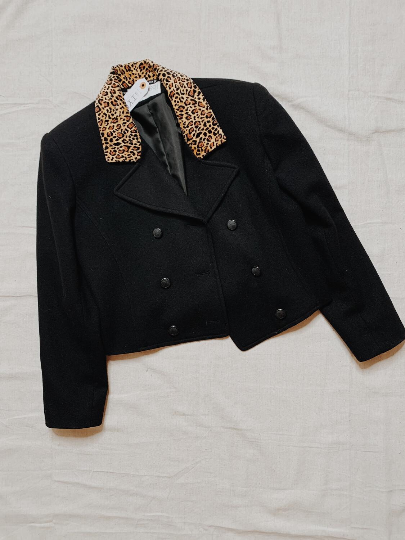Women International Scene 12 Black Leopard Collar