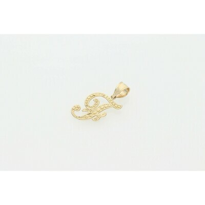 10 karat Gold Textured Letter