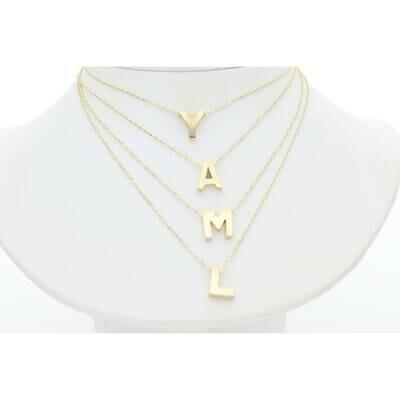10 Karat Gold Fancy Rollo Chain + Letter