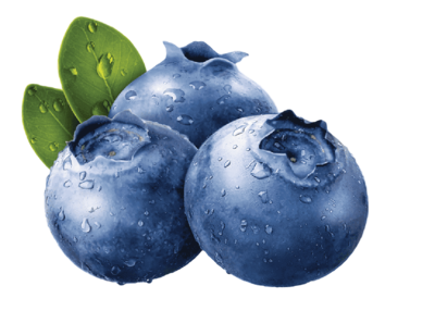Blueberry bubble tea