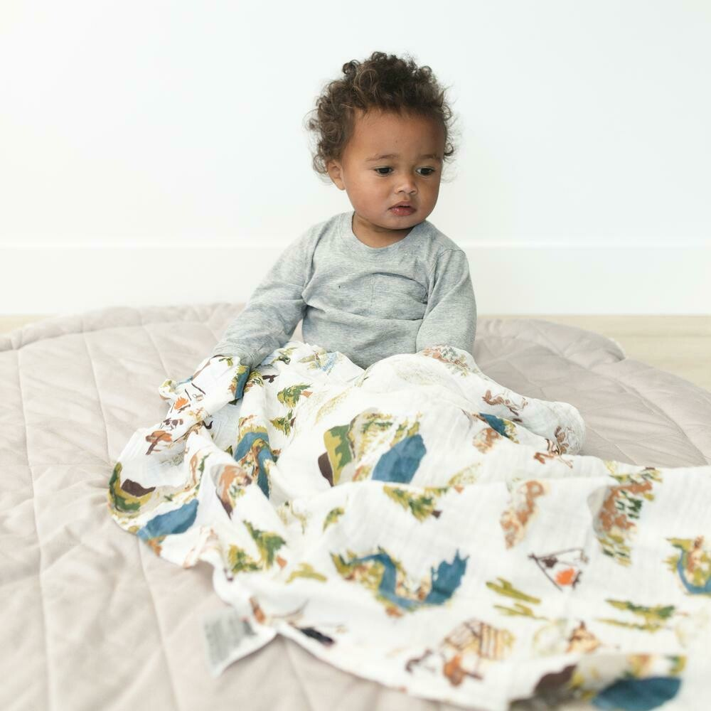 2 Pack Classic Muslin Swaddle Blankets