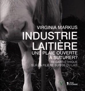 Industrie laitière, une plaie ouverte à suturer ? - Virginia Markus