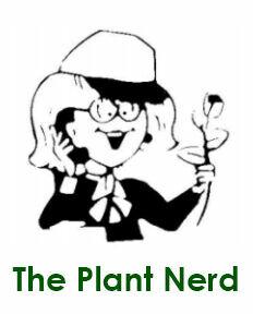 Perennial Favorites Greenhouse
