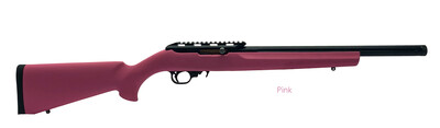 22LR Rifle with Hogue Standard Stock