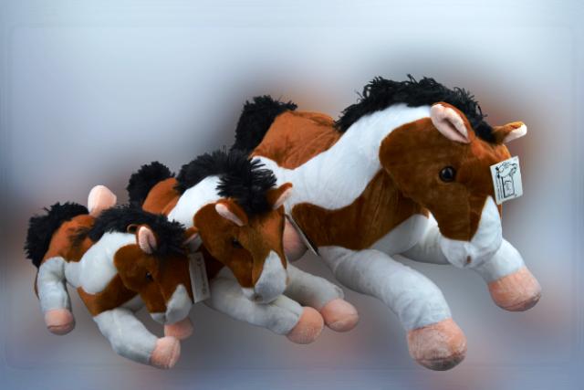 """Pferd, """"Tobi"""""""