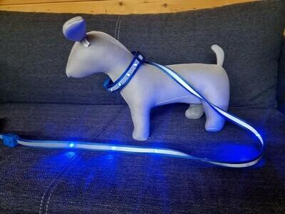 LED-Hundeleinen (5 Farben)