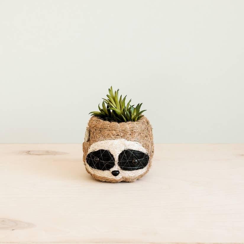 Mini Pot 3-color Sloth