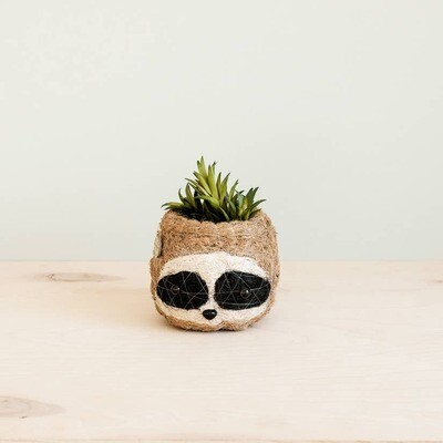 Mini Pot 3-color Sloth