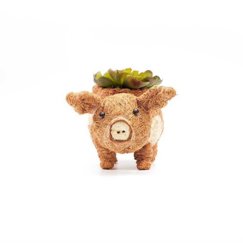Baby Pig Planter