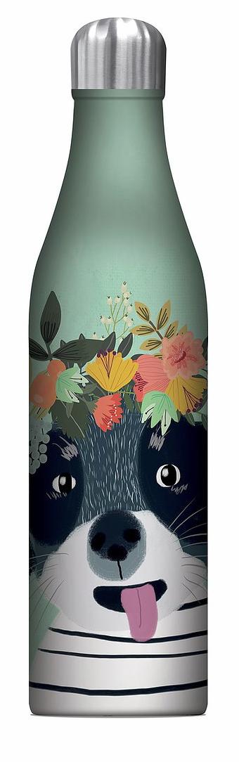 Water Bottle, Fancy Dog