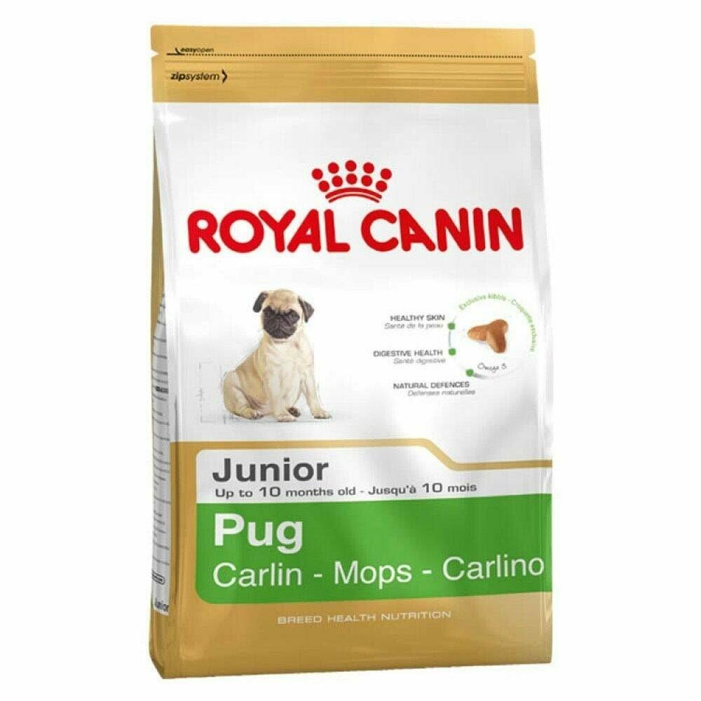 Royal Canin Pug Puppy Dry Food