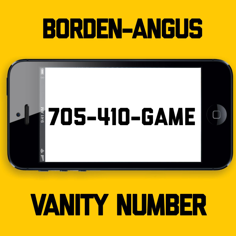 705-410-GAME VANITY NUMBER BORDEN-ANGUS