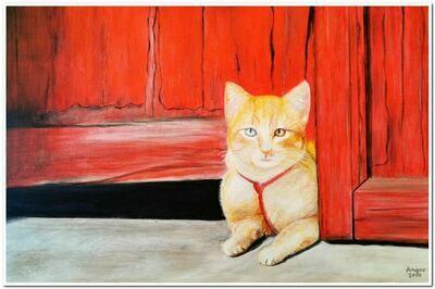 Petit chat aux yeux bicolores