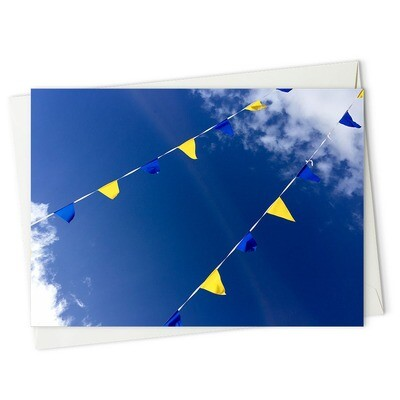 Blue Bunting Sky