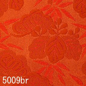 Japanese woven fabric Kinran  5009br