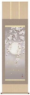 Watching cherry blossom at night. Code: hng-scrl_a2-022