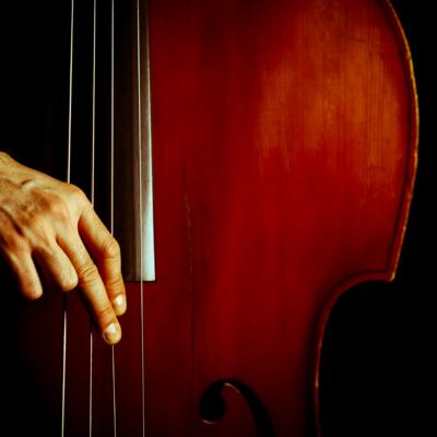Long Bass Solo