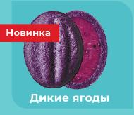 Кремлевске орешки (дикие ягоды) 5 шт.