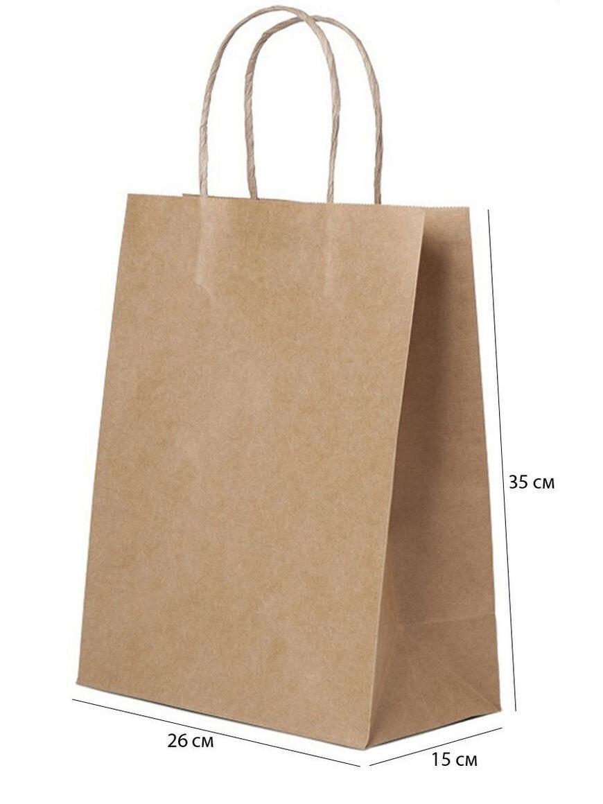 Пакет бумажный с ручками (10 шт.)