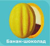 Кремлевские орешки желто-коричневые (банан-шоколад) 5 шт.