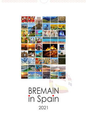 Two Bremain 2021 Calendars